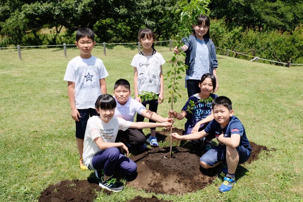 「ふくしまさくら」の植樹